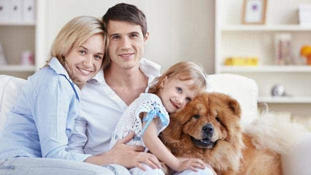 Wills & Trusts dog-young-family Direct Wills Strawberry Hill